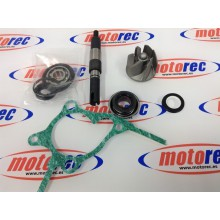 kit bomba agua honda Foresight 250 FES Pantheon 250